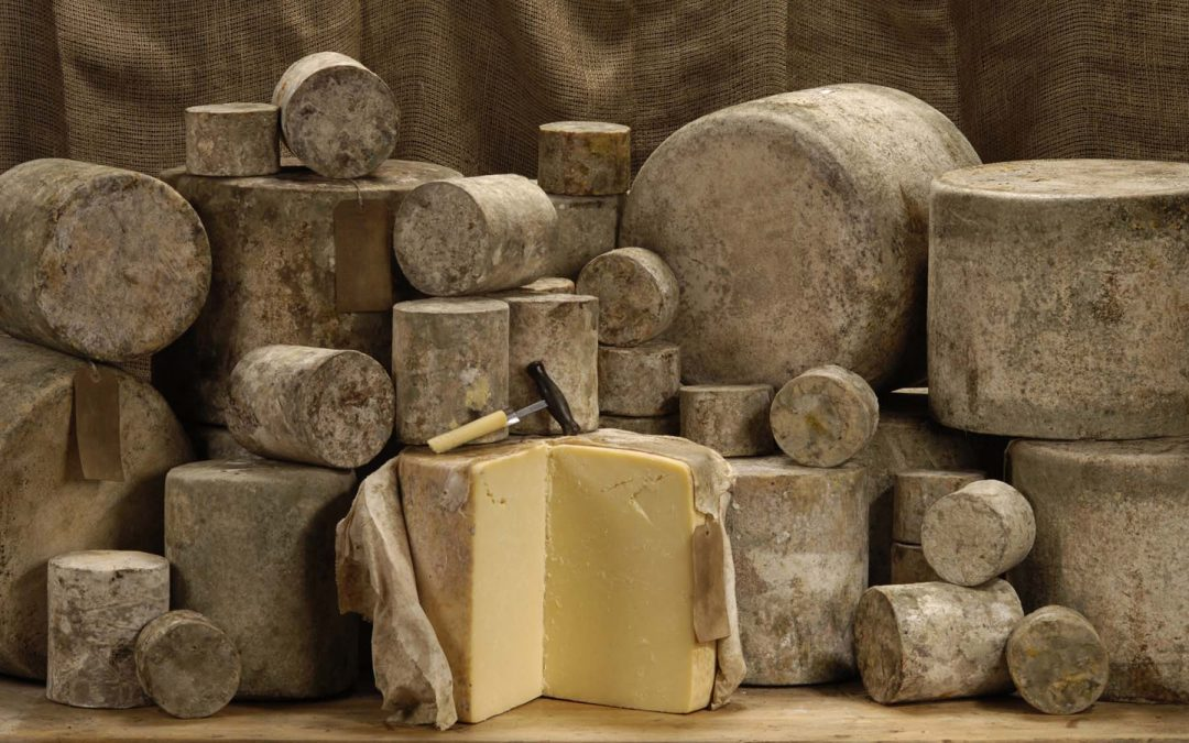 The History of Cheddar – British Cheese Weekender